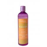 Шампунь с экстрактом плаценты для нормальных волос, Evinal