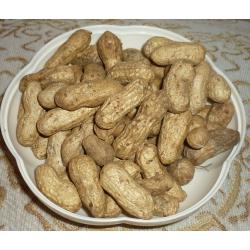 Арахис сырой в скорлупе, 1 кг