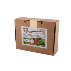 Мыльные орехи S.Mukorossi (Мукоросси) для стирки, 200 гр.